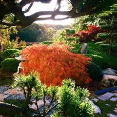 Jardin d'arts et d'essais: Jardin zen de style  par Esprit Zen, Asiatique
