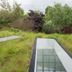 Living roof:  Garden by Fraher Architects Ltd