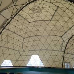 Domos Geodésicos gran escala: Salas multimedias de estilo  por Alarq Aldo Benassi Arquitectura y Construcción,