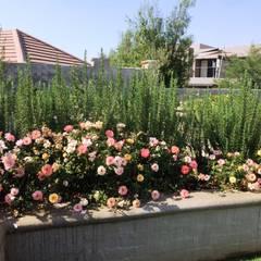 New garden for Nico and Jolande:  Garden by Gorgeous Gardens, Mediterranean