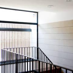 Scholen door navarro+vicedo arquitectura