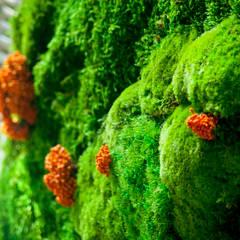 Jardín vertical en hall de entrada oficinas centrales Orange (Madrid): Centros comerciales de estilo  de Landscapers