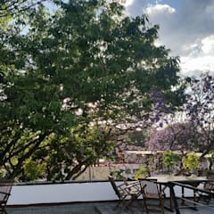 Oficinas en Coyoacán: Terrazas de estilo  por Endémica Arquitectos