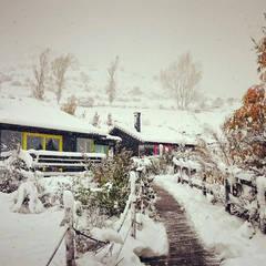 RUSTICASA   Cabañas Patagónicas   Inverno: Hotéis  por Rusticasa