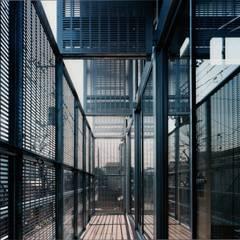 西荻窪の住宅: 株式会社ラウムアソシエイツ一級建築士事務所が手掛けたテラス・ベランダです。