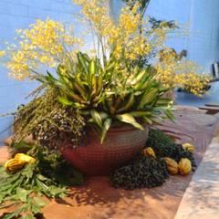 Arranjos de flores tropicais. Lojas & Imóveis comerciais tropicais por Edu Leal Paisagismo Tropical