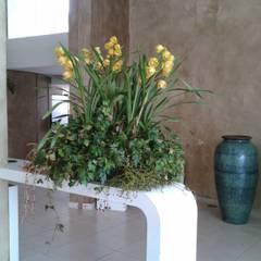 Venue by Edu Leal Paisagismo