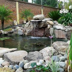 ESTANQUE-PH: Jardines de estilo topical por RIVERA ARQUITECTOS