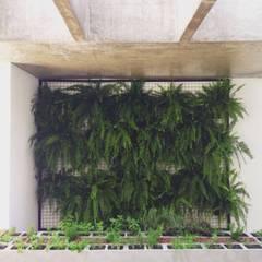 Athenas : Jardins minimalistas por INTRIO