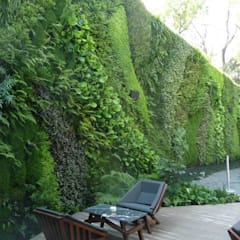 Restaurante Tori Tori Polanco, CDMX: Restaurantes de estilo  por Verde360°