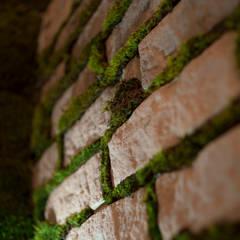 Устричная Moss: Ресторации в . Автор – Design Evolution