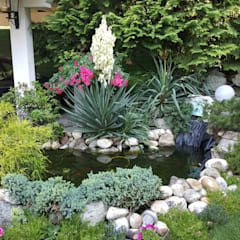 Garden Pond by MARA GAGLIARDI 'INTERIOR DESIGNER'