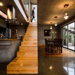 Casa Jardines del Sur : Pasillos y hall de entrada de estilo  por Dx Arquitectos
