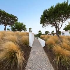 Villa Salema: Jardins  por Jardíssimo,Mediterrânico