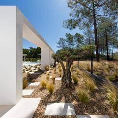 Villa Almancil: Jardins  por Jardíssimo,Minimalista