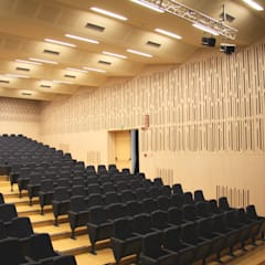 Auditorium : Sedi per eventi in stile  di Arch&Craft architects