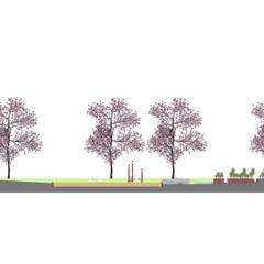 Schnitt - Zeichnung:  Veranstaltungsorte von Bender Freiraumplanung