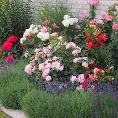 Garden by MAGIA OGRODU