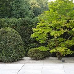 สวนแบบเซน by Jürgen Kirchner Wasser + Garten