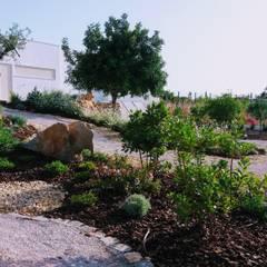 mediterranean Garden by JARDIMGARVE