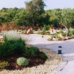 Garden by JARDIMGARVE, Mediterranean