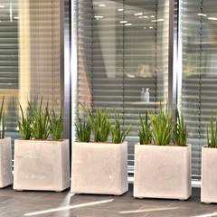 Eternit - Ein neuer alter Werkstoff:  Autohäuser von BAUMHAUS GmbH   Raumbegrünung Pflanzenpflege