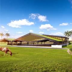 Haras Comanche: Centros de exposições  por VERRONI arquitetos associados