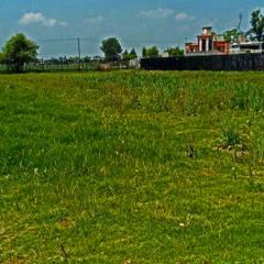 Передний двор в . Автор – terranova Proyectos de Jardinería y Limpieza , Лофт