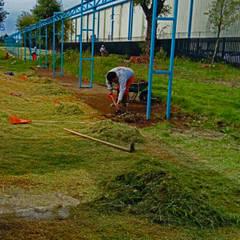 فناء أمامي تنفيذ terranova Proyectos de Jardinería y Limpieza