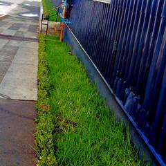 Jardines en la fachada de estilo  por terranova Proyectos de Jardinería y Limpieza