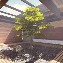 PATIO CENTRAL: Jardines zen de estilo  por TDT Arquitectos