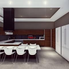 BOCA ARQUITECTOS:  tarz Ankastre mutfaklar