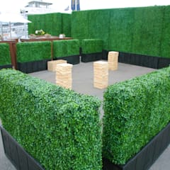 Artificial hedges in Planter:  Front yard by Sunwing Industries Ltd