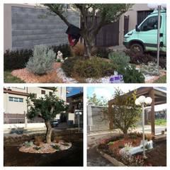 Jardines zen de estilo  por Piante Macrì