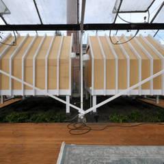 In de kas:  Terras door Marks - van Ham architectuur