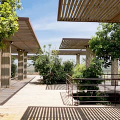 Outdoor Restaurant Seating Area:  Conference Centres by Khammash Architects