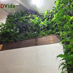 Jardines verticales interiores para hoteles: Hoteles de estilo  por DVida Jardines verticales