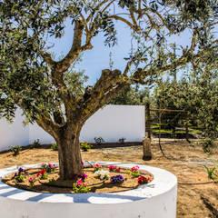 : Jardins campestres por Grupo Norma
