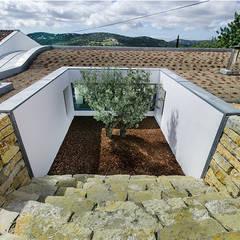 Casa MalhÃO: Jardins de fachada  por CORE Architects