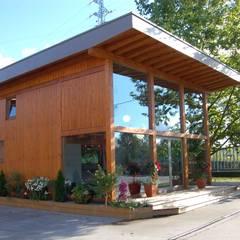 منزل خشبي تنفيذ Rusticasa, حداثي خشب Wood effect