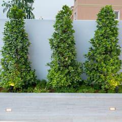 Project A by Hortus Landscaping Works LLC Modern