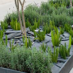 Detalle jardín banqueta.: Jardines de estilo mediterraneo por Hábitas