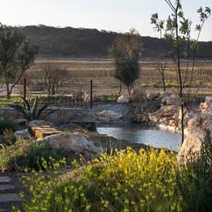 Fraccionamiento Puerta del Lobo.: Jardines de estilo  por Hábitas