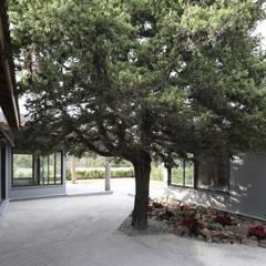 Egeli Proje – Merdiven Korkuluk Detayı:  tarz Kayalı bahçe