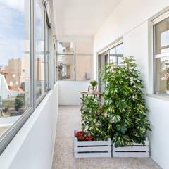 Apartamento T2+1 | Alojamento Local Jardins de Inverno modernos por João Boullosa Moderno