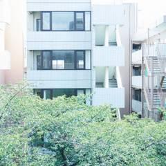 O-HOUSE: .8 / TENHACHIが手掛けた窓です。