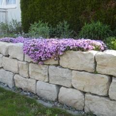 Abstützungen, Gabionen, Natursteinmauer: landhausstil Garten von Garten-Landschaftsbau Hierreth-Felser GmbH