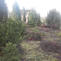 Bepflanzungen und Rasenanlagen:  Garten von Garten-Landschaftsbau Hierreth-Felser GmbH