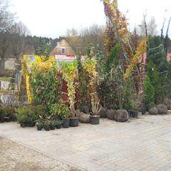 Taman oleh Garten-Landschaftsbau Hierreth-Felser GmbH, Industrial