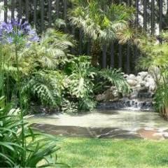 Jardin en Santa Fe: Jardines de estilo  por BARRAGAN ARQUITECTOS